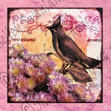 Flowers with Vintage Bird and Post Card Images